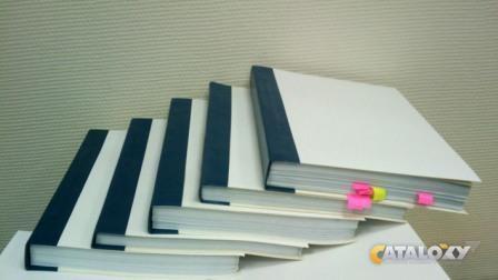 Подшивка документов в бухгалтерии заполнение долей в заявлении на регистрацию ооо